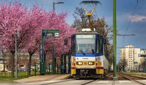 A március végi Szeged legszebb villamosmegállója