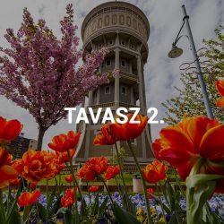 Tavasz II.