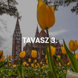 Tavasz III.