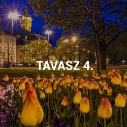 Tavasz IV.