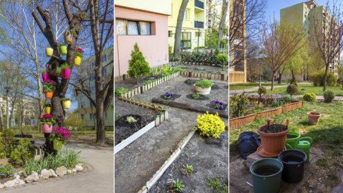 Egyre több gyönyörű közösségi kert található a szegedi Tarján városrész panelházai között