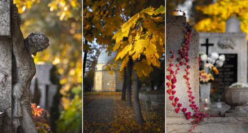 Az emlékezés hangulatképei, avagy őszi késő délután a szegedi Belvárosi-temető öreg sírkertjében