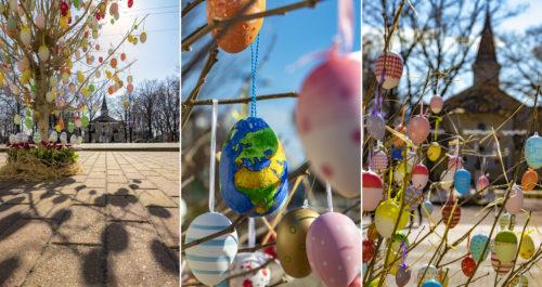 Közel ezer húsvéti tojás díszíti a sándorfalvi főtér fáit